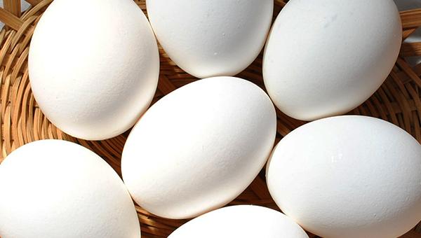 Huevos blancos final